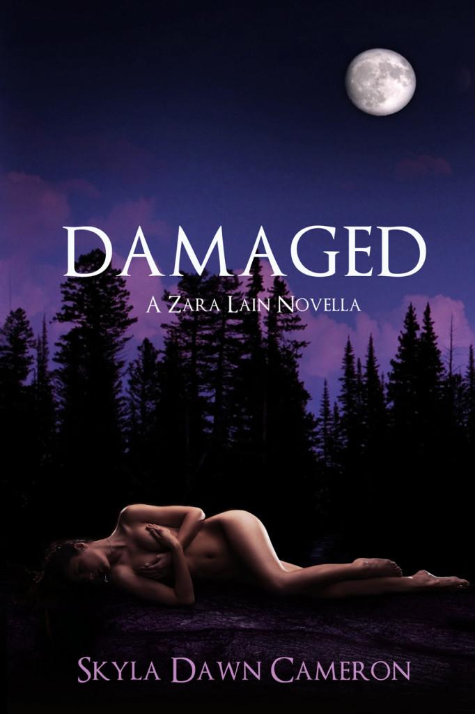 Damaged_Kindle