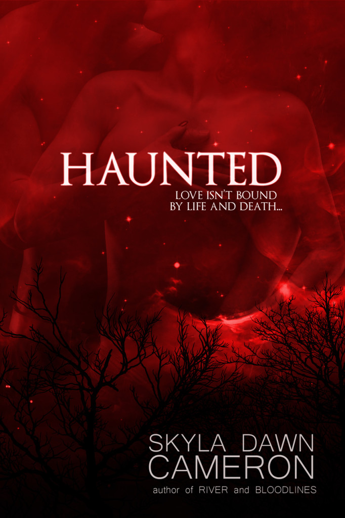 Haunted_alt_2015-kindle